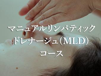 マニュアルリンパティックドレナージュ(MLD)コース